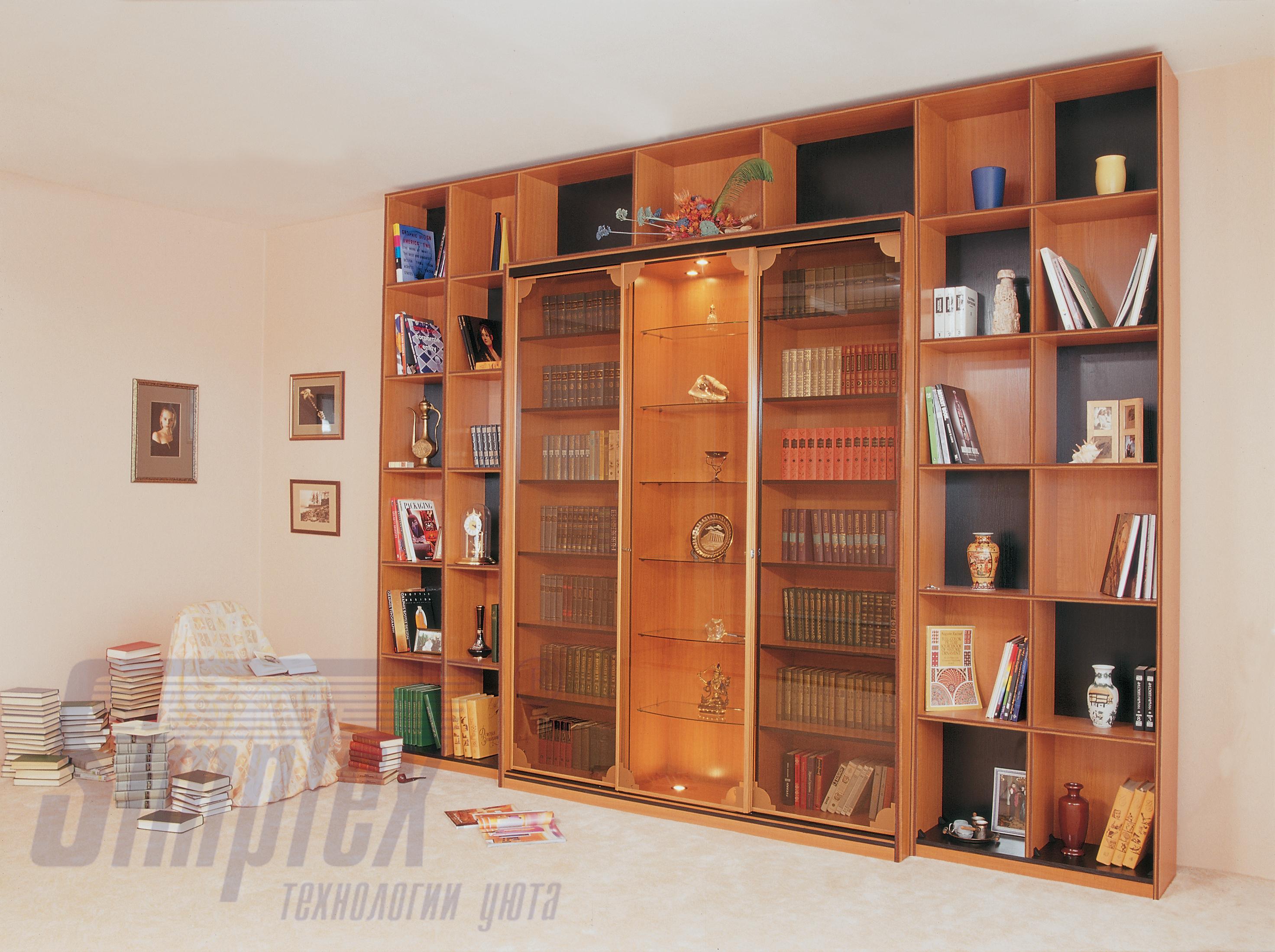 Шкаф купе для книг фото.